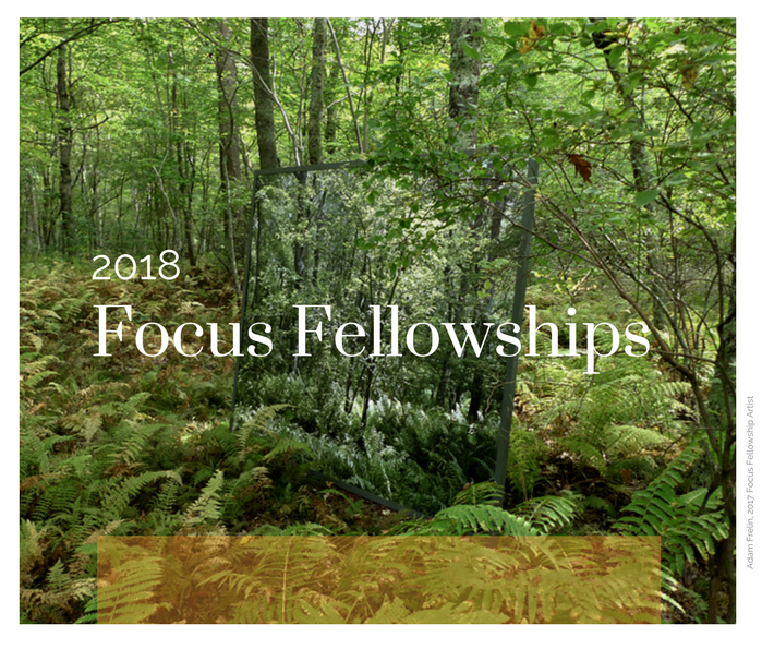2018 Focus Fellowship Intro.png