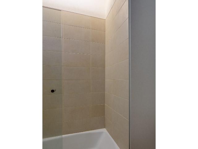 Custom Tiles on Shower
