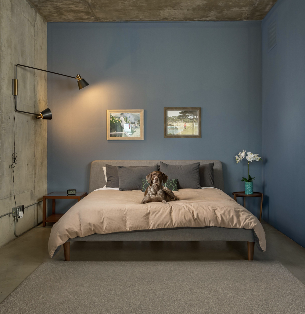 Marley in her very own Temple Loft, Unit 519. This 1,785 sq. ft. loft is currently listed by The Whipple Group.