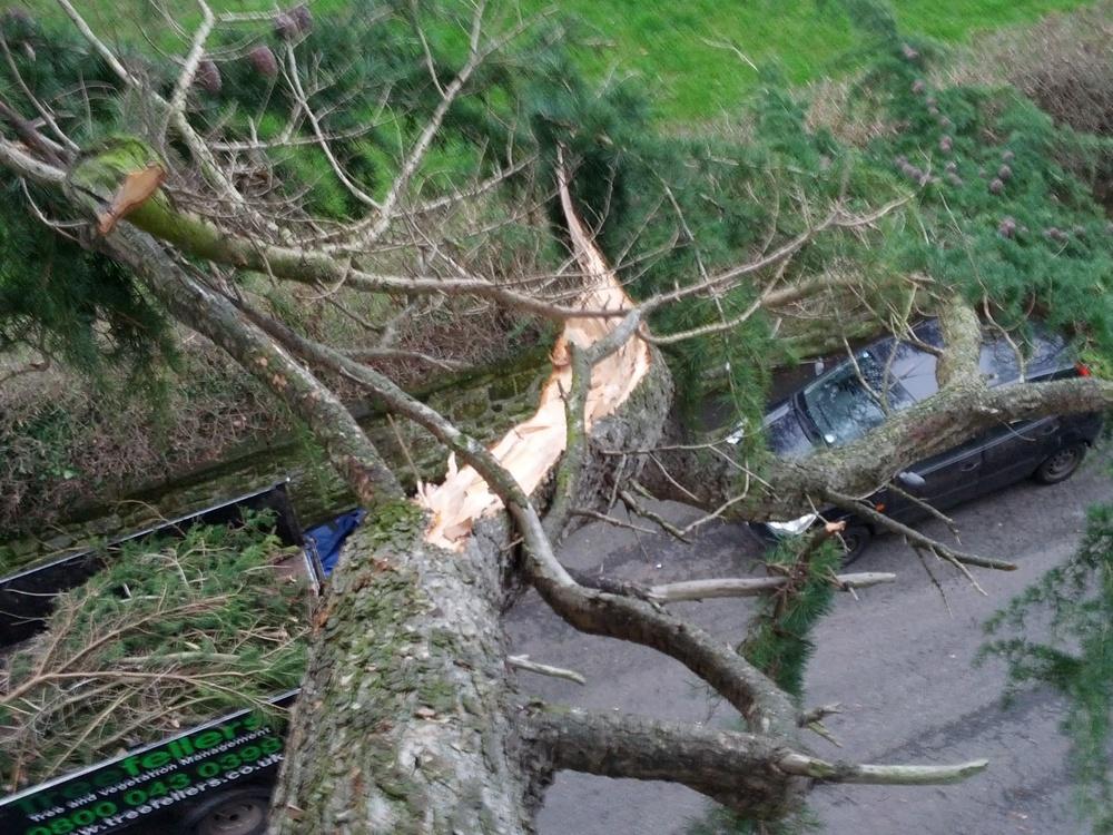 Broken Branch, Parbold.