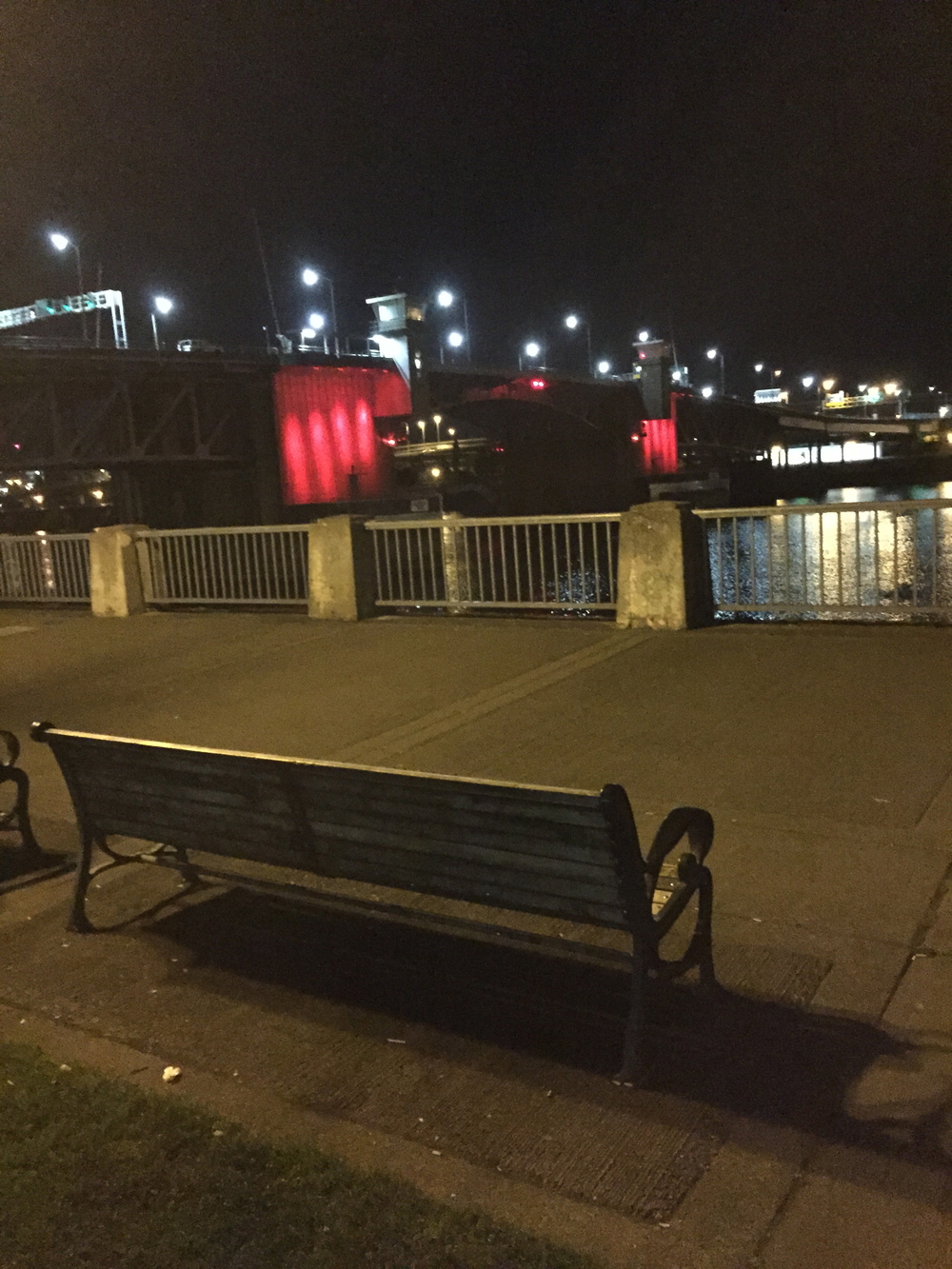 Awesome late night chats on this park bench overlooking the Willamette river right outside our hotel.
