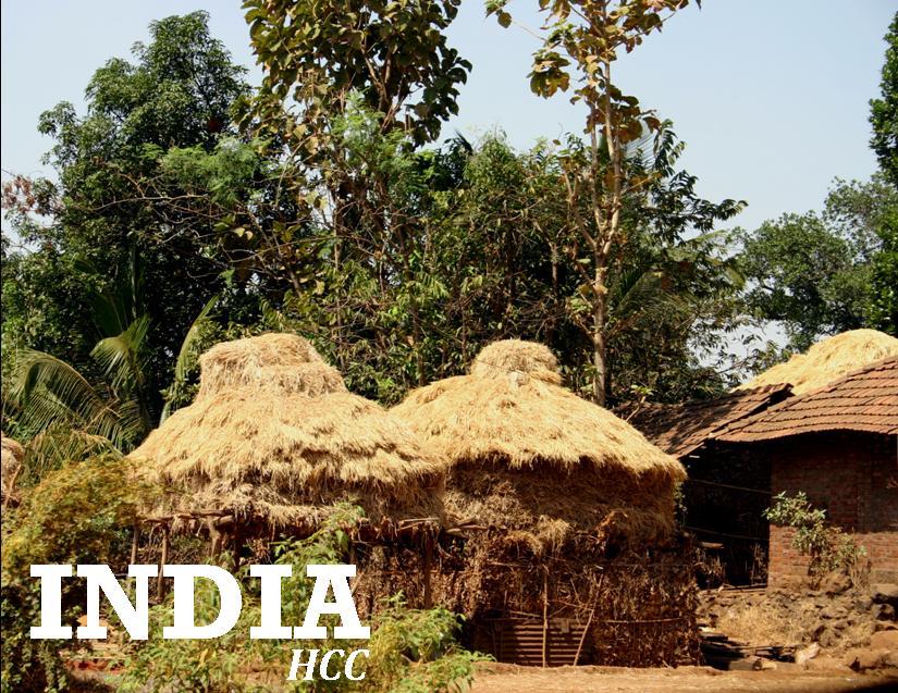 India_HCC_web.jpg