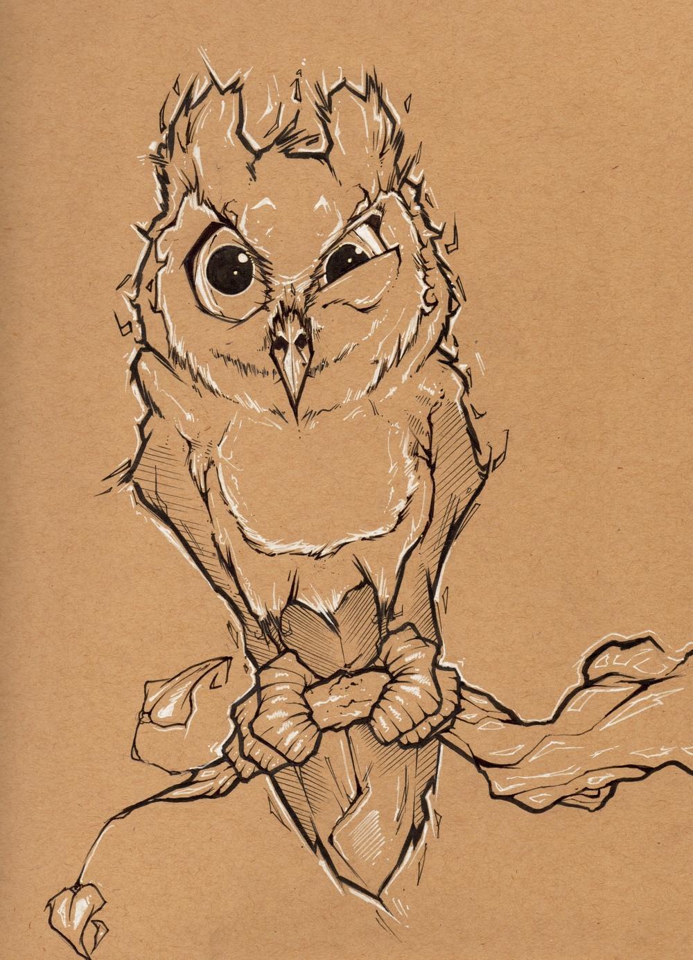 danieldufford-owlsketch