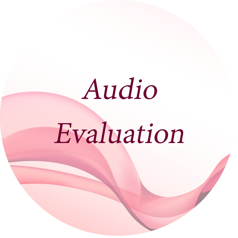 Audio Evaluation