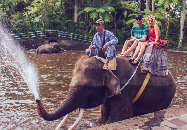 The grand finale of our elephant ride.