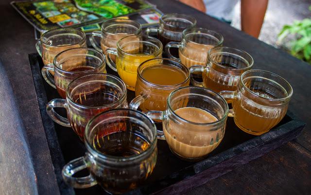 Coffee and tea tasting at the Satria Coffee Plantation.