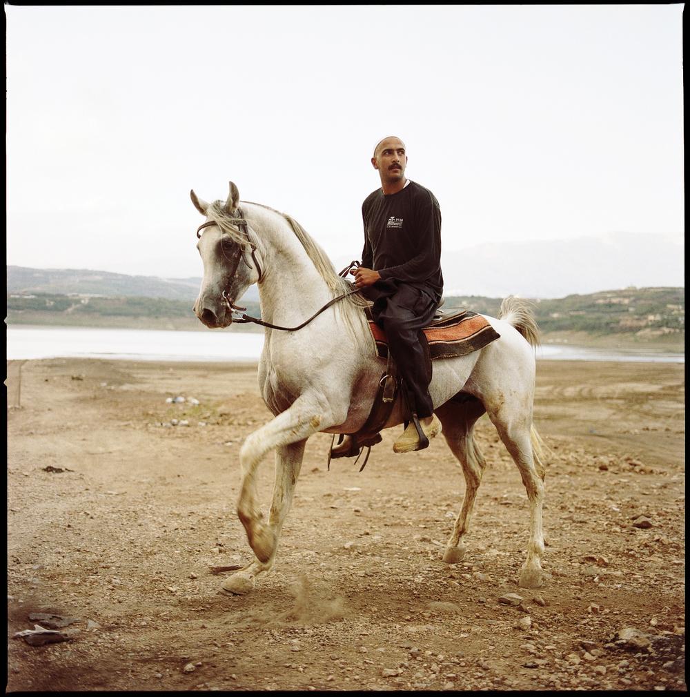 Horse_8_67.jpg