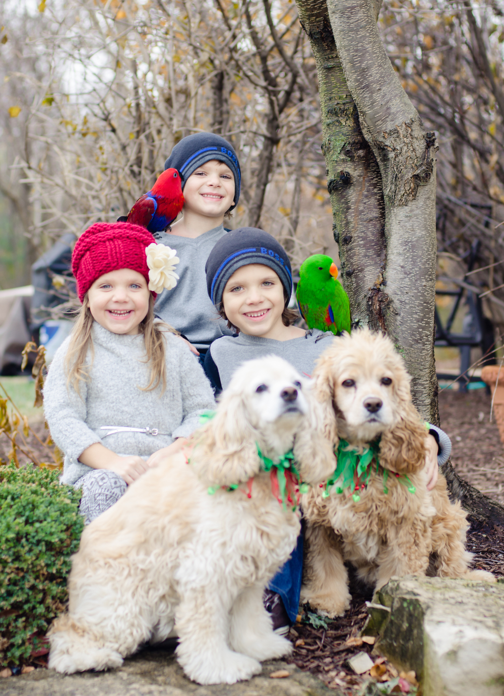 2 dogs, 2 birds and 3 awesome kids, yeah bring it on!! This was a fun shoot. Great family and such cool laid back parents.