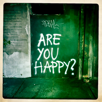 Are You Happy?  / Karen B. Golightly