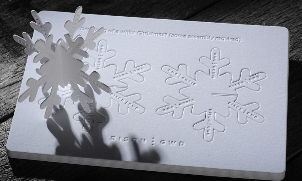 Bison Xmas Card 2012.jpg