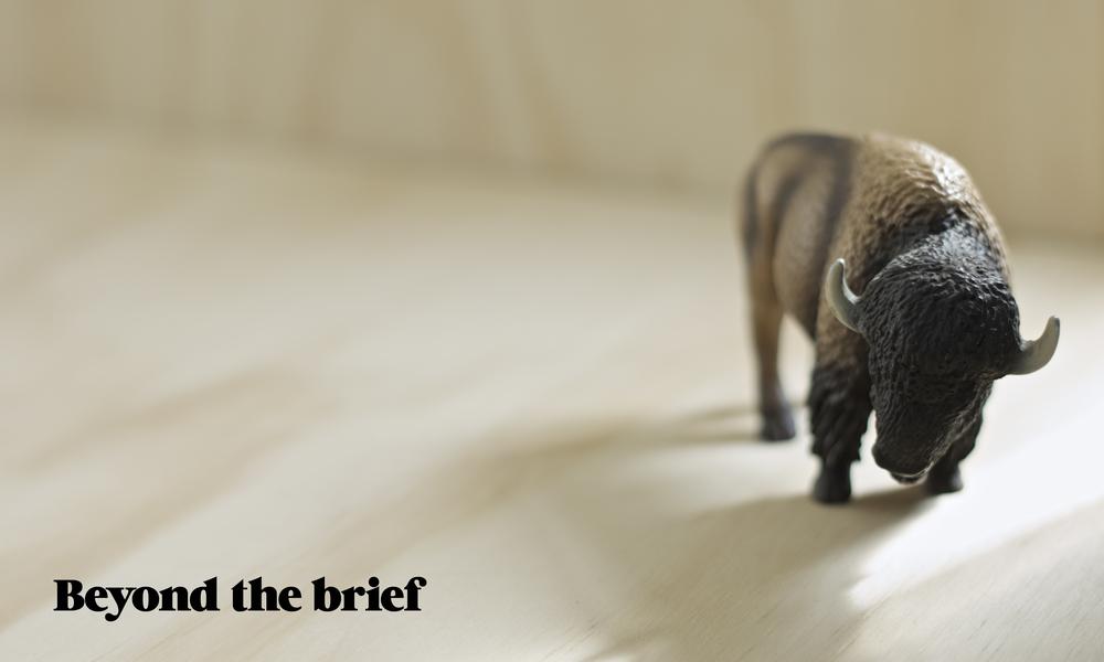 Bison_crop.jpg