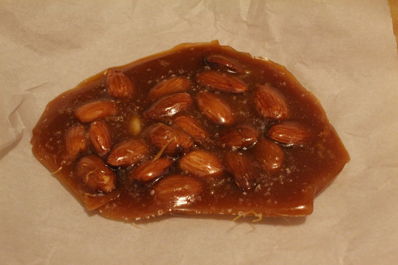 Shelby was experimenting with sugar and ended up with Almond Brittle!