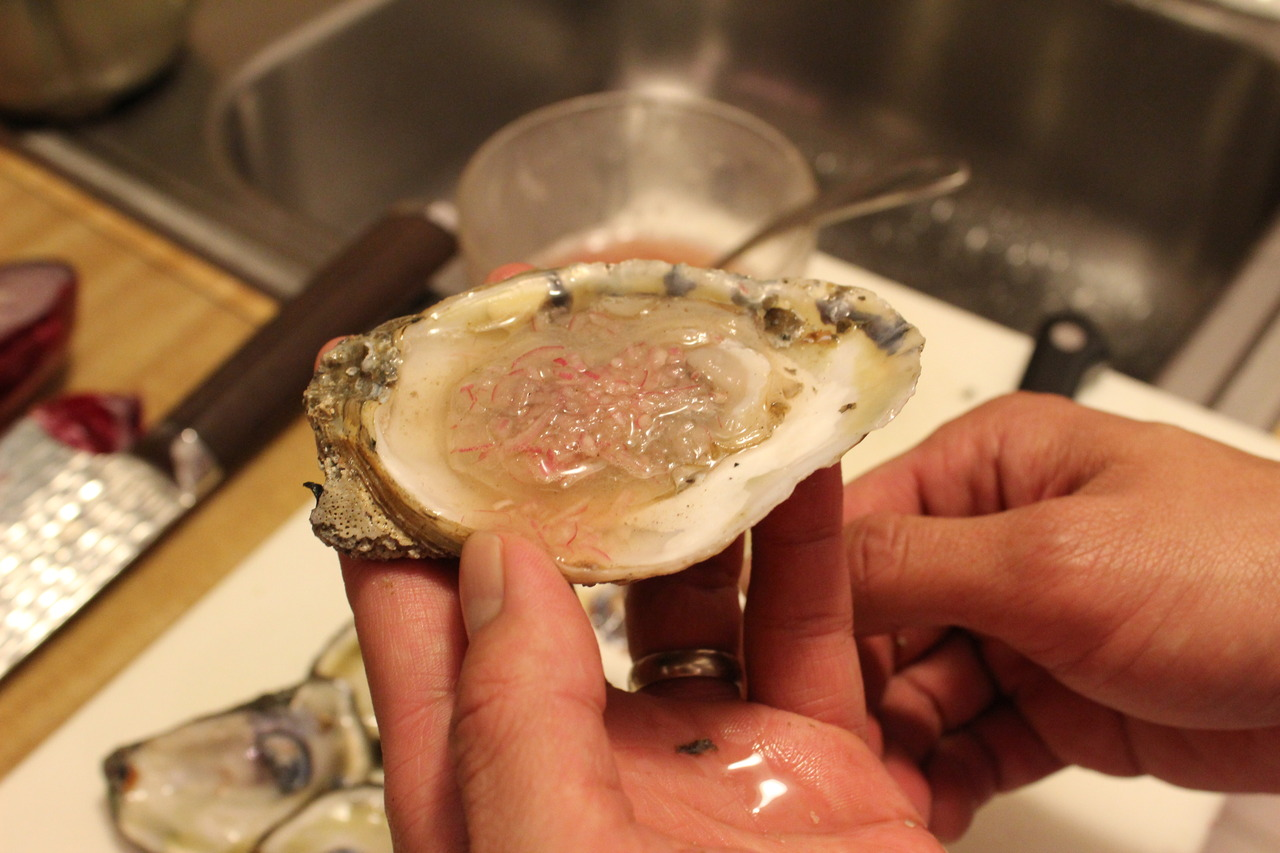 Late posts. We picked up some oysters last week. Raw with a homemade mignonette.