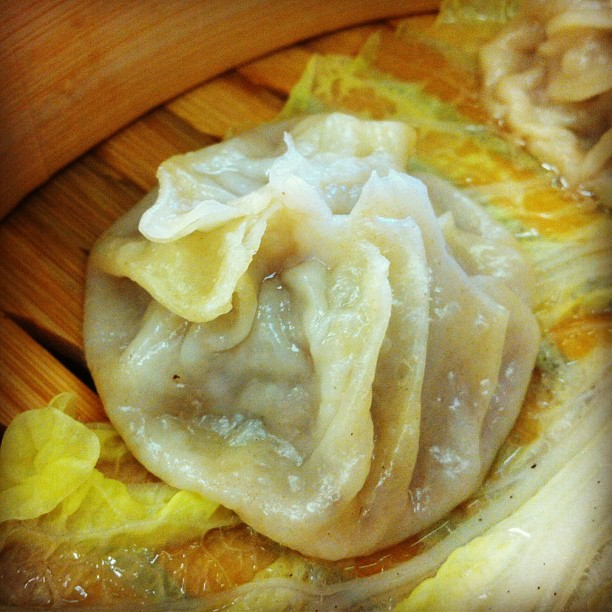Xiaolongbao at Judy's in Virginia Beach, Va (at Judy's Sichuan Cuisine)