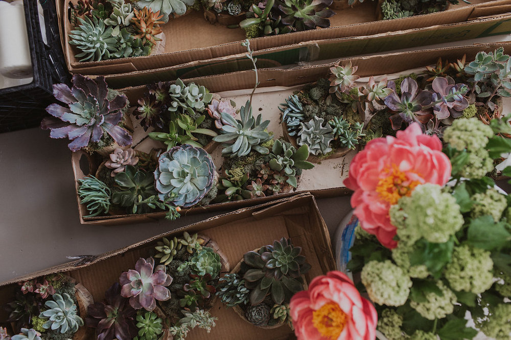 Wedding flowers and succulents.