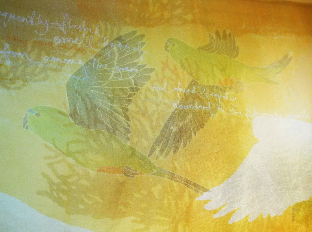 Degradation - Orange-Bellied Parrots (detail) 2014. katazome and yuzen on silk organza