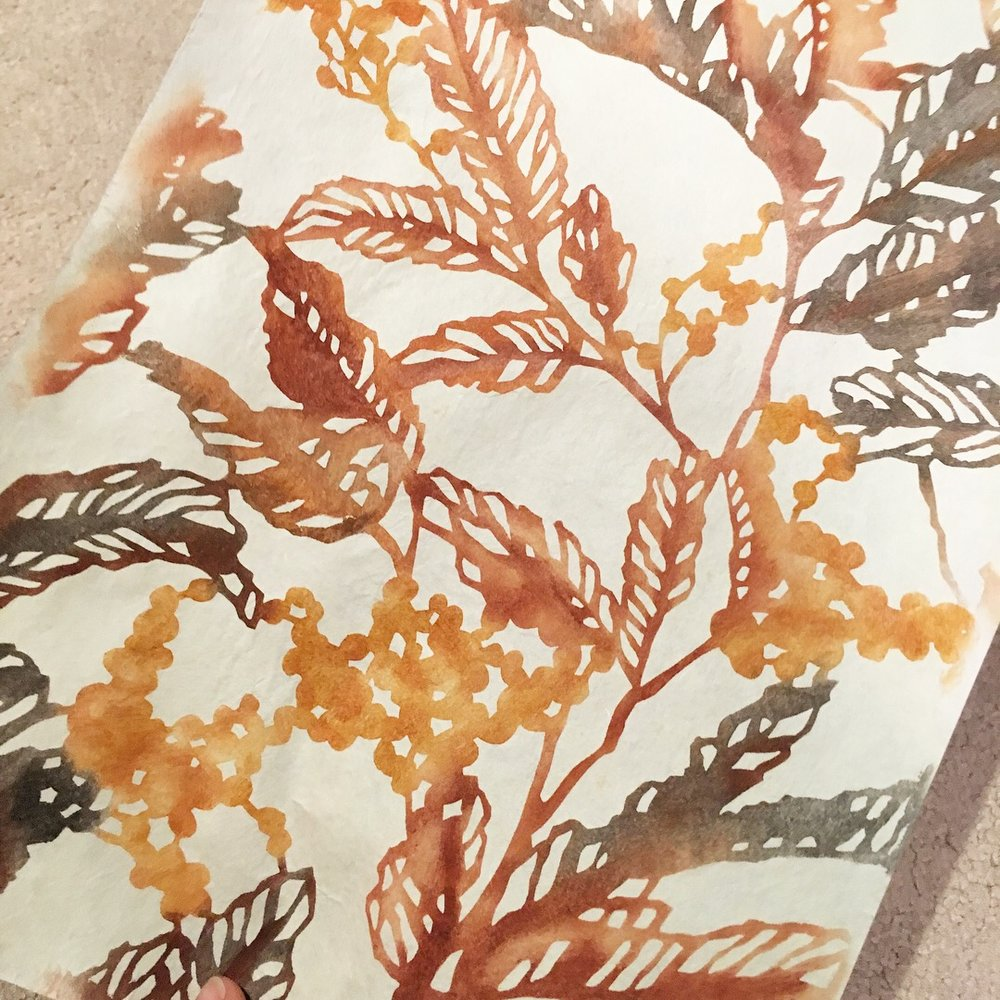 a first foray into using natural pigments - earth, ash, ochre- to katazome dye washi. This is a stencil I cut of a flowering wattle.
