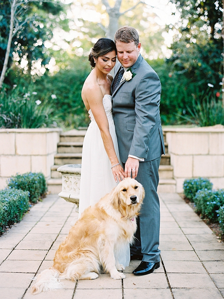 000010 Brisbane Fine Art Wedding Photograph of wedding bride and groom their pet dog labrador.jpg