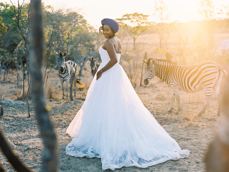 africa-zimbabwe-bride-destination-dress-fine-art-wedding-photographer-groom-land-rover-safari-Wildlife-zebra.jpg