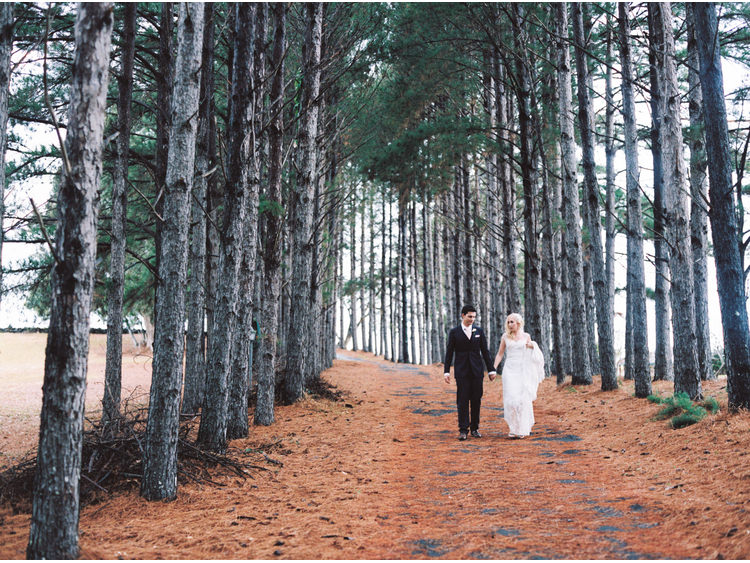 bridal-portrait-bride-cones-dress-fine-art-wedding-photographer-gold-coast-groom-holding-hands-pine-needles-pine-trees-road-walking.jpg