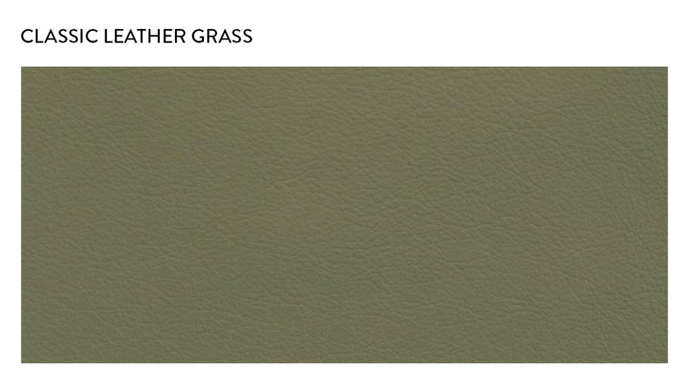 ClassicLeather_Grass.jpg
