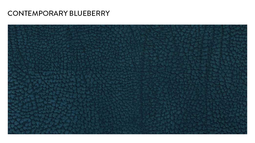 Contemporary_Blueberry.jpg