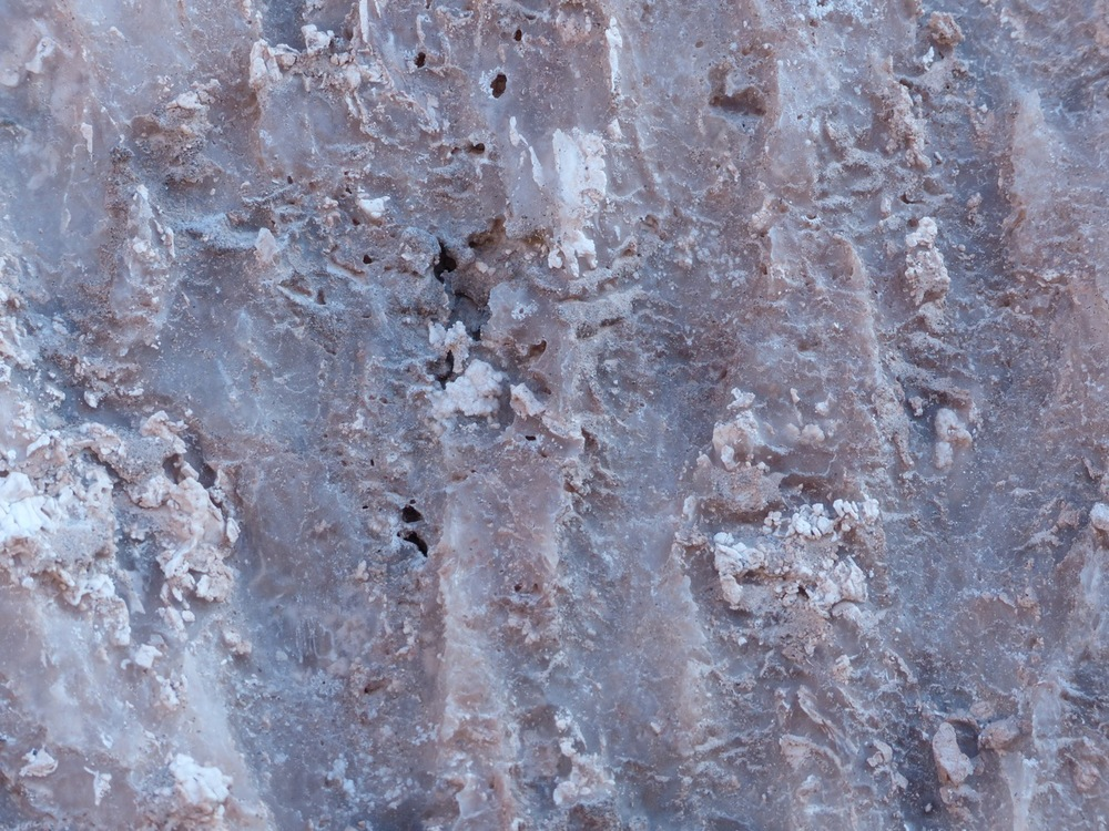 Salt Range rocks up close