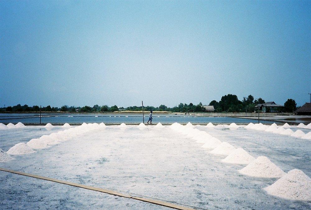 Salt Farming 2