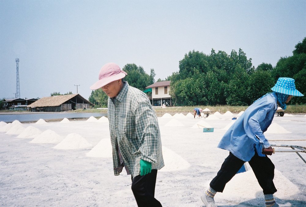 Salt Farming 5