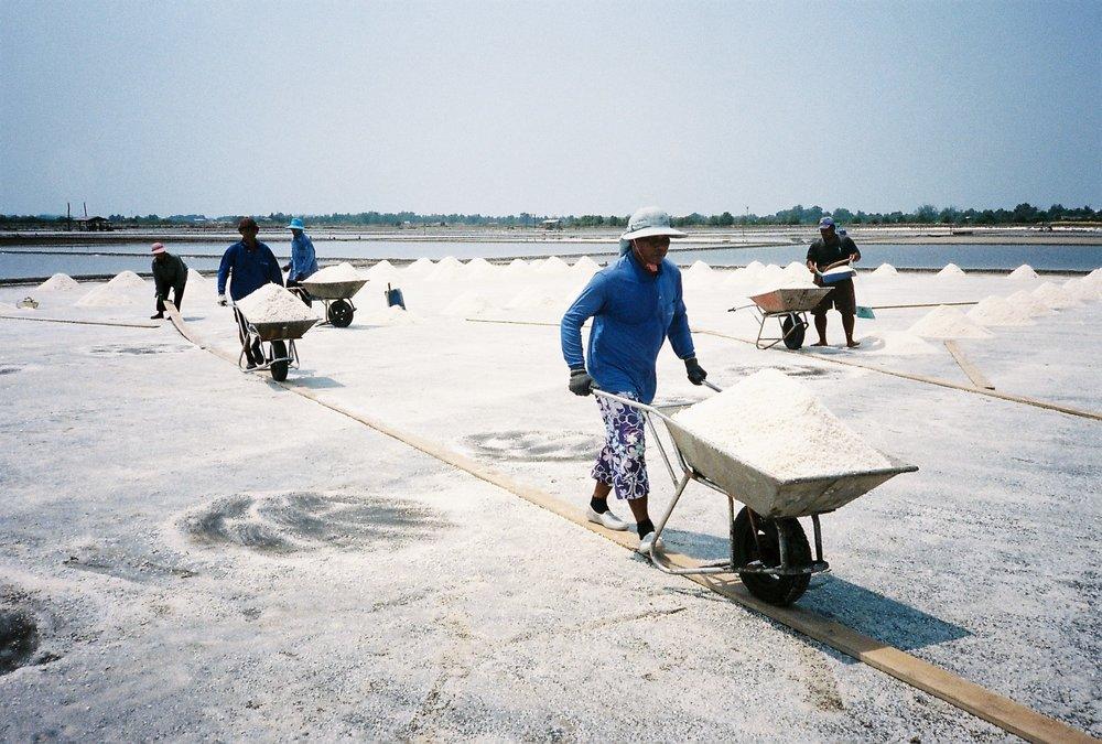 Salt Farming 7
