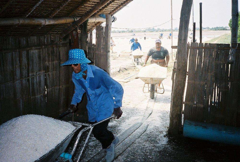 Salt Farming 8