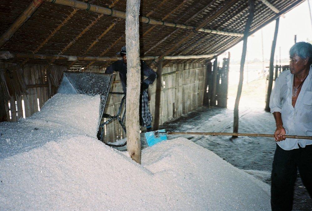 Salt Farming 10