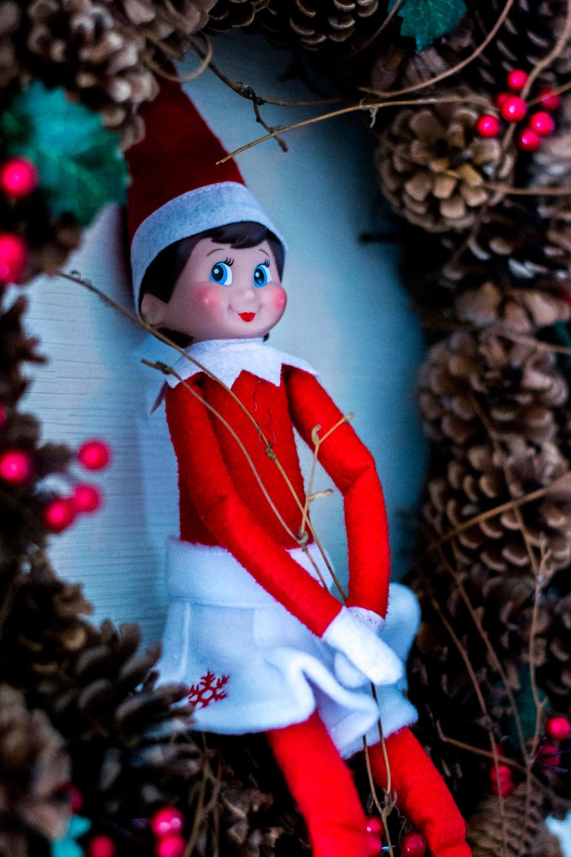 Hi, I'm Piper the elf. Merry Christmas!