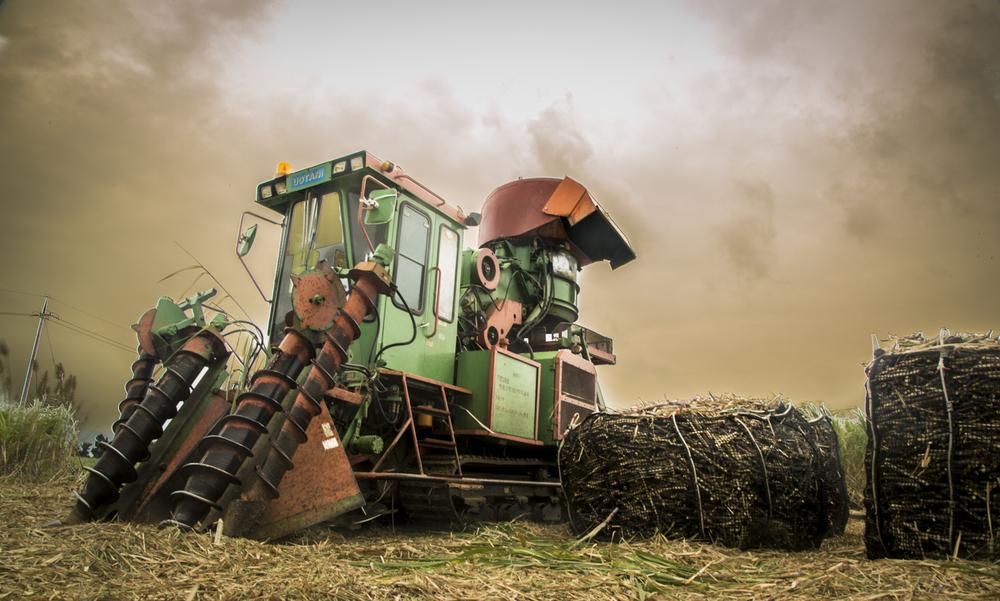 Uotani Sugar Cane Harvester
