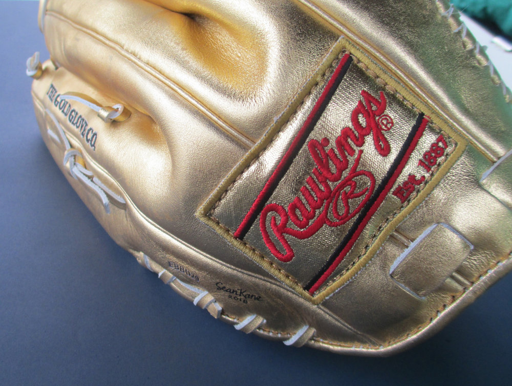 Rawlings-Gold-Glove-Painting-by-Sean-Kane.jpg