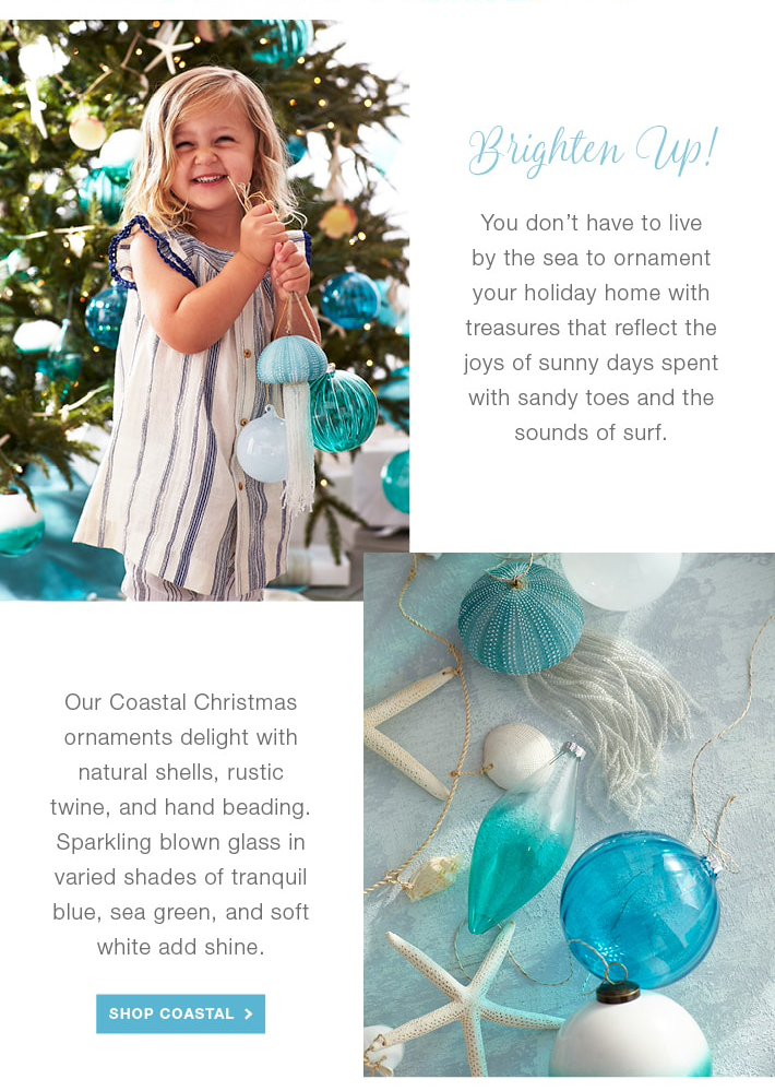 2886-EMAIL-HLFS-Coastal-Ornaments-Feature_04.jpg