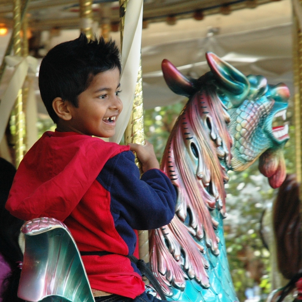 This is a Garden carousel. It has a rabbit, a rooster, a pig, a cat, a shark and even a hummingbird! Children love to ride on the sea dragon. Of course there are several horses decorated with beautiful flowers and a bright red chariot.