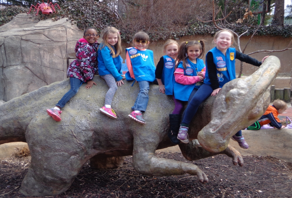 Girl Scouts - for ed page.jpg