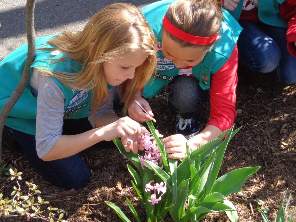 Girl Scouts binoculars.jpg