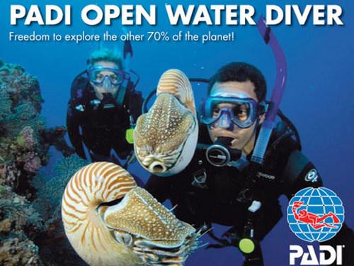 Open Water Scuba Certification — Dive Georgia - Atlanta Metro Scuba ...