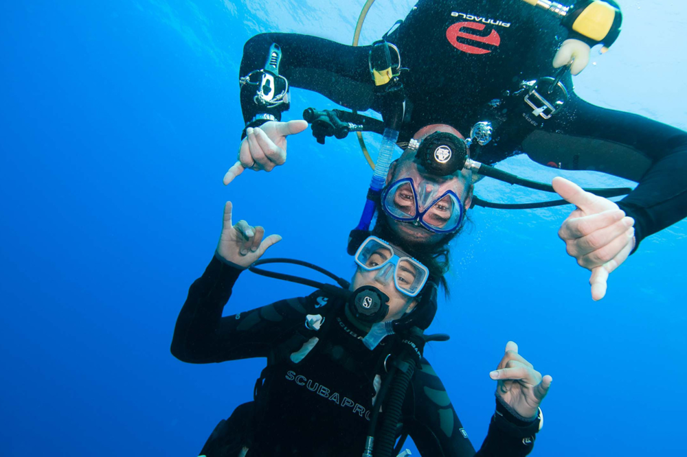 Learn To Dive With Us  Dive Georgia is the place to become a diver! With access to state of the art pool facilities and operator of the only open water dive resort in Georgia we can get you there! Just give us two weekends!     Find Out How →