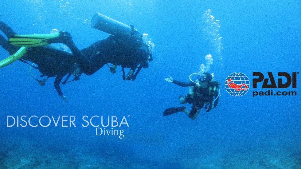 Padi Discover Scuba Diving Dive Georgia Atlanta Metro Scuba