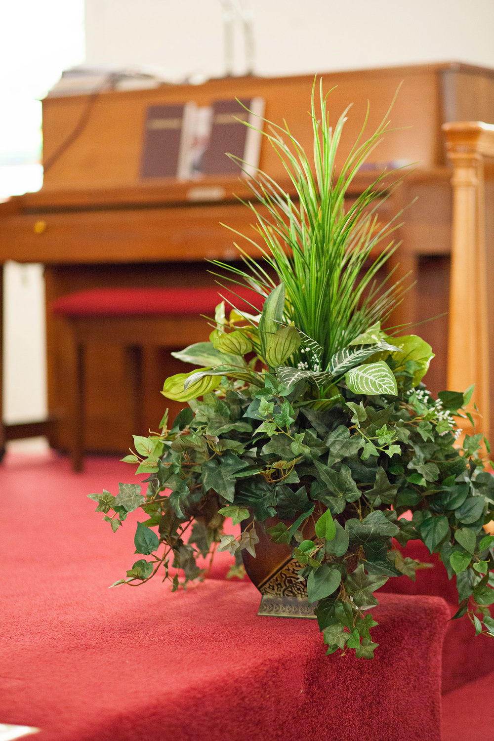 Ferns in a Church Wedding