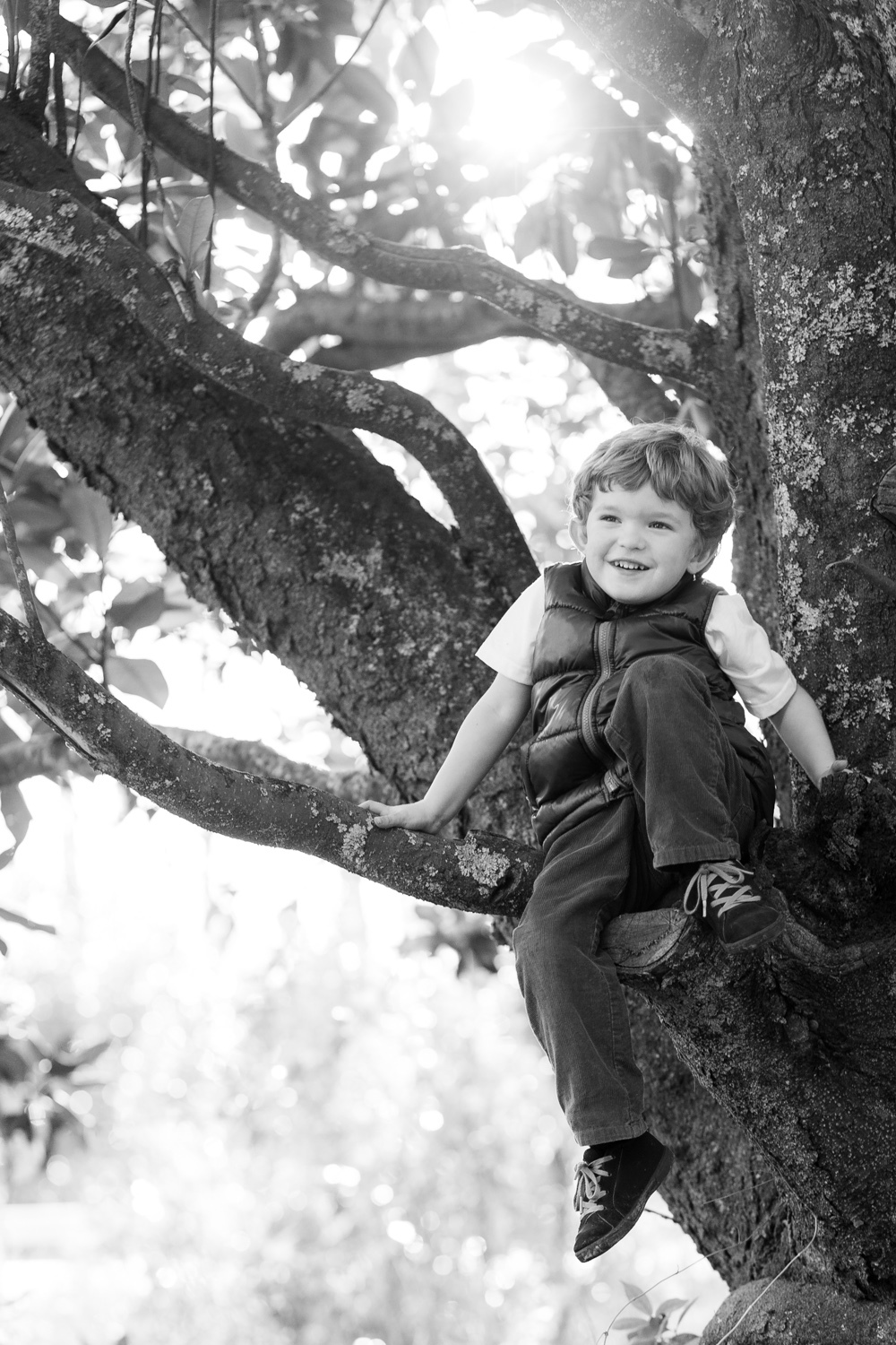 kids portrait tree conyers georgia