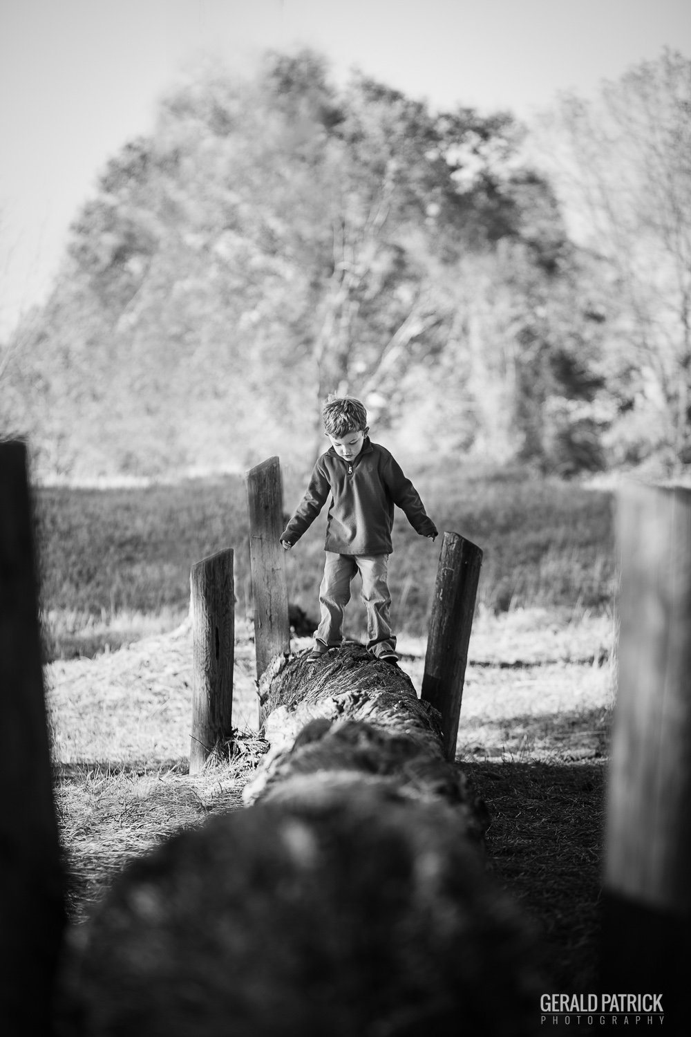 conyers ga photographer international horse park