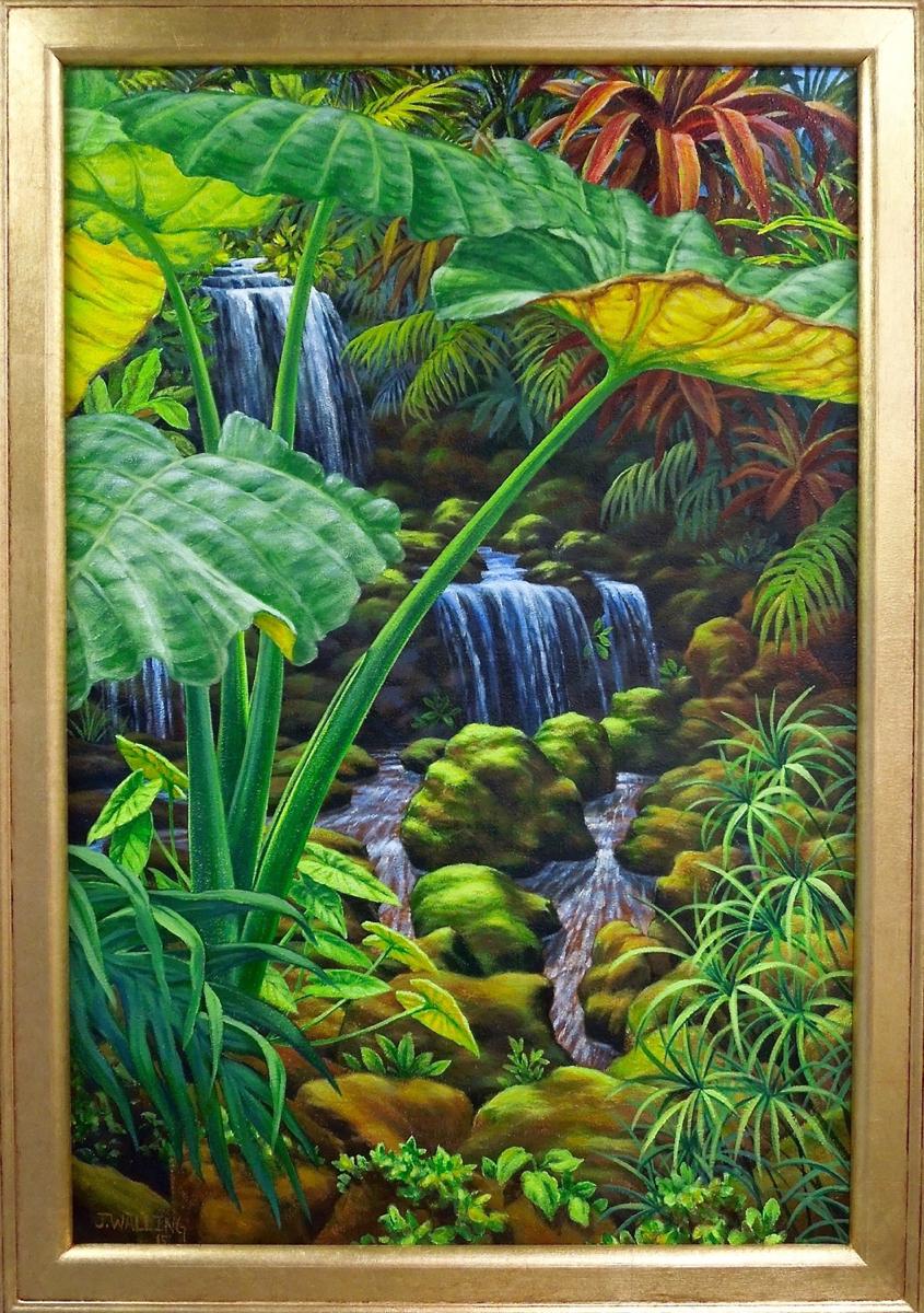 Luz Verde, Landscape
