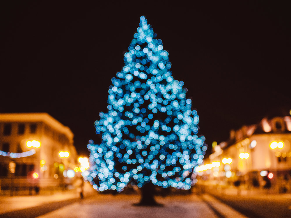 city-tree-bokeh-christmas-21430.jpg