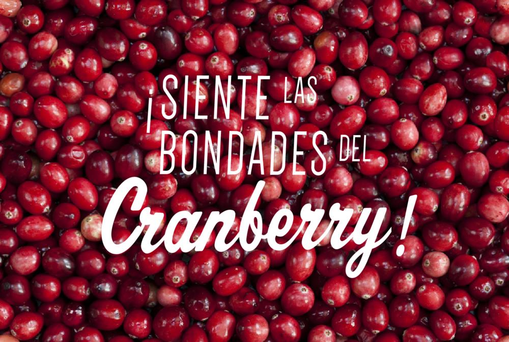 cranberry-bog-01.png