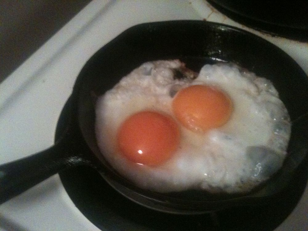 Best Eggs ever.jpg