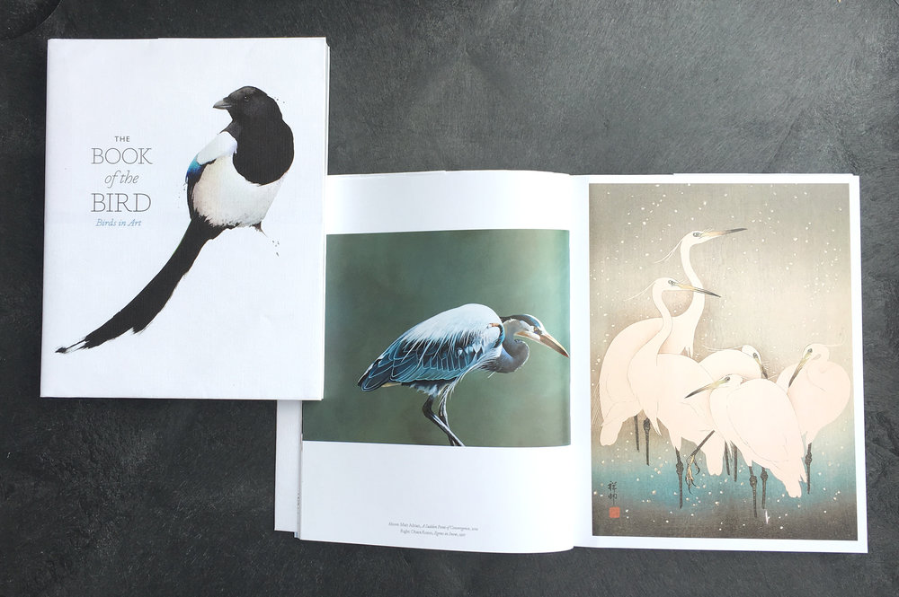 "Several of my paintings were featured in the recently released ""The Book of the Bird: Birds in Art"" from Laurence King Publishing. It features avian paintings by Picasso, Degas and some of the top contemporary bird artists from around the world. To learn more or to order the book, click on the image above."